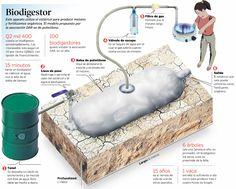 Biodigestor: Alternativa energética