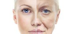 Công dụng của thực phẩm chức năng chống lão hóa khi sử dụng Active Gold Collagen đối với cơ thể có tác động rất tốt và tích cực, chống lão hóa tự nhiên ...