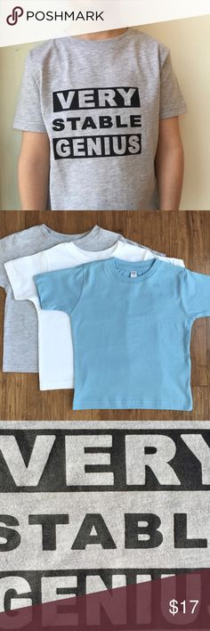 """Stable Genius NWOT Toddler T / 3 Colors / 4 sizes Just like our president, your toddler can also be a """"Very Stable Genius""""!  This toddler's shirt comes in gray (blend), blue, and white, (both 100% cotton) and is available in 2T, 3T, 4T, and 5/6 (runs a little big!).  This shirt, as well as all toddler/women's/baby's/men's shirts, bags, and apparel in my online Cheeky Moon Shop (www.cheekymoonshop.com) are screen-printed by hand by me in my home.  Please specify color and size when…"""