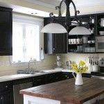 Black Paint Colored Cabinets with Glass Doors