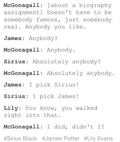 Sirius Black and James Potter Writing Reports on Each Other for McGonagall