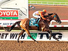 Beholder toyed with the field of nine other males and pulled away to win the Pacific Classic by 8 1/4 lengths in her first start against the boys and her first start at 1 1/4 miles. She is the first female to win the race.