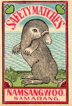 Platypus (India, c. 1930)