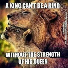 Photo by king love feelings clourful interesting art queen quotesandsayings True Quotes, Great Quotes, Qoutes, Inspirational Quotes, Got Your Back Quotes, You Are My Everything Quotes, Funny Quotes, Lion Quotes, Lion And Lioness