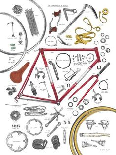The Anatomy Of A Bicycle Print By David Sparshott