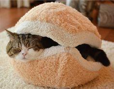 http://cdn.goodshomedesign.com/wp-content/uploads/2014/04/Hamburger-Pet-Cats-Beds-Kitty.jpg