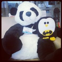 20 Tips To Survive Google Panda or Penguin Updates