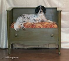 Dresser Dog Bed | Never Throw Away an Old Dresser. Here Are 12 Creative Ways to Upcycle It!
