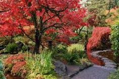 Image result for japanese gardens