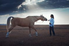 Why Communicating With Your Horse Is Vital for His Welfare