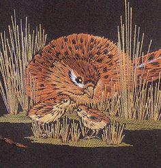 Helen Stevens - pheasants