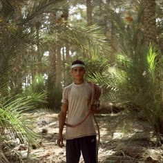 Denis Dailleux - Sakkara, près du Caire, 2005