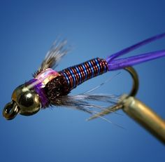Prince Nymph purple variation (tied by Curtis Fry)For more fly fishing info follow and subscribe www.theflyreelguide.com Also check out the original pinners site and support