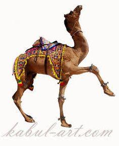 antique camel - Google Search