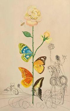 "Salvador Dalí ""Flordali"" Rosa papilio (1967)"