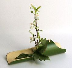 Ikebana - Gardening For You