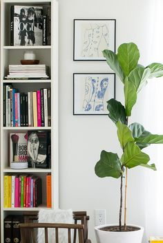 This bright corner feels fresh with a Fiddle Leaf Fig Tree, handmade art and colorful books Casa Retro, Fiddle Leaf Fig Tree, Fiddle Fig, Blog Deco, Home Pictures, Interior Exterior, Orange County, Office Interiors, Interiores Design