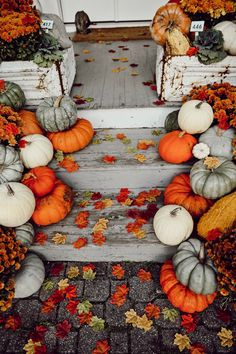 Outside Fall Decorations, Halloween Front Door Decorations, Halloween Porch, Thanksgiving Decorations, Fall Halloween, Autumn Decorating, Porch Decorating, Porch Steps, Front Steps