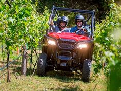 "New 2016 Honda Pioneer 500 ATVs For Sale in Missouri. 2016 Honda Pioneer 500, Go More Places On A Pioneerâ""¢ 500.The Pioneerâ""¢ 500 is a brilliant concept: Like a full-sized side-by-side, it lets you take a passenger along and has the off-road capability to get you where you need to go. But the Pioneerâ""¢ 500 is a new take on the SxS formula: it's narrow, fits on tight trails, is fun to drive and easy to load into a full-size truck bed.But you still get a full-sized list of features, like…"