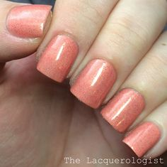 The Lacquerologist: Model City Polish Spring Bouquet Collection: Swatches & Review!
