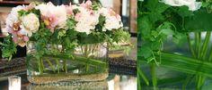 English Ivy Garden