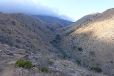 The PCT in Tylerhorse Canyon south of Tehachapi