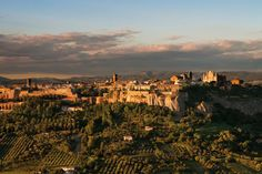 Orvieto, walled hill town in Umbria surrounded by vineyards and olive orchards. The town glows in the late afternoon before sunset.