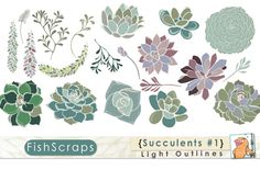 Succulents Clip Art - Light Outlines by FishScraps on Creative Market