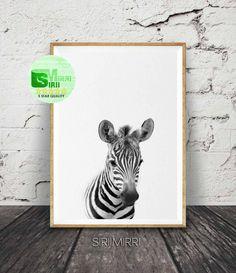 Zebra Wall Art, Zebra Print, Animal Photo, Animal Print, Safari Animal Safari Decor, African Animal, Nursery Wall Art, Nursery Animal Art by SiriiMirri on Etsy
