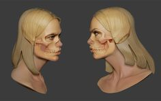 Image result for eye anatomy WITH SKULL