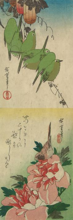 White-eyes and Gourds, Finch and Peonies, from a series of Bird and Flower Subjects