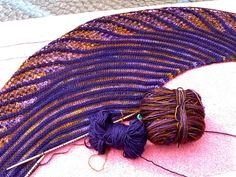 Knitting in Beantown: Nymphalidea and Frosted Hat for WIP Wednesday