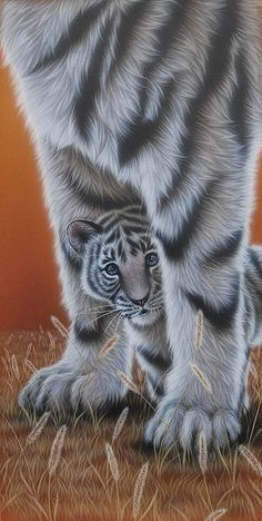 White tiger - Painting Art by Kentaro Nishino - Nature Art & Wildlife Art - Airbrushed Wildlife Art. Cut Animals, Baby Animals, Animal Paintings, Animal Drawings, Big Cats, Cats And Kittens, Lion Tigre, Tiger Images, Tiger Painting