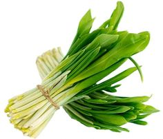 Celery, Vegetables, Healthy, Shop, Green, Vegetable Recipes, Health, Veggies, Store