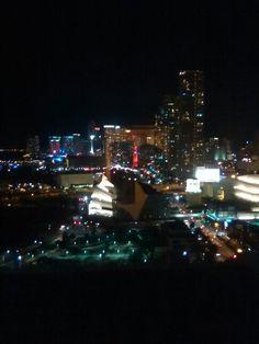 Downtown Miami Pitbull