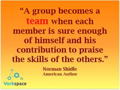 A group becomes a TEAM when each member is sure enough of himself and his contribution to praise the skills of the others -- Norman Shidle