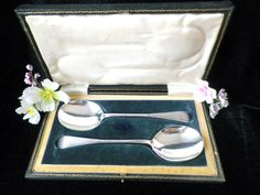 Silver plated serving spoons boxed pair 2 serving by Taingtiques