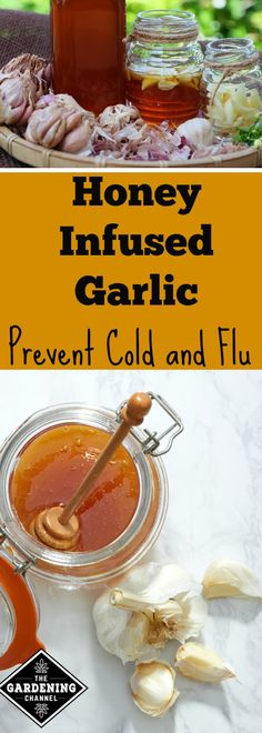 Try using this natural home remedy from your garden to prevent colds and flu.  Garlic and honey are powerful combination to boost your immune system.