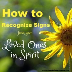 How do you know that a sign from your deceased loved ones is really a sign? Learn to tell the difference between messages and signs from your dead relatives and simply your wishful thinking. Hint Hint: wishful thinking is the more rare of the two!