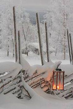 Let it snow ~                                                                                                                                                                                 More