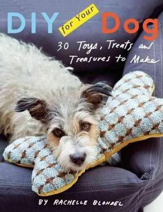 DIY for Your Dog: Toys, Treats, and Treasures to Make