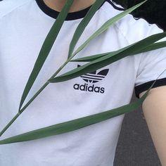 adidas, grunge, and plants image