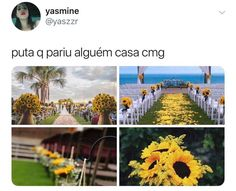 Foto Jungkook, Jimin, Why God Why, Crush Love, Memes Status, Comedy Memes, Frases Tumblr, Just Smile, Funny Memes