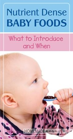 Nutrient Dense Baby Foods: What to Introduce Your Baby and When
