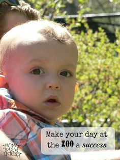 Try these simple tips to make your day at the Zoo a total hit!