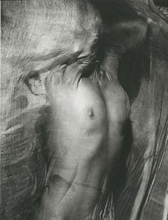 Girl [or Nude] Under Wet Silk, Paris, 1936 - one of Blumenfeld's most iconic early art photographs. [The extraordinary story of Erwin Blumenfeld - Telegraph]