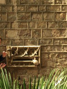 Casa l'Ardíaca  Hay un buzón modernismo que con la ayuda de las golondrinas muestra que el correo debe ser rápido, pero la tortuga muestra como el correo actualmente es; lento. También, si tocas la tortuga no tienes el suerte malo de la calavera antes.