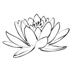 - Lotus Flower Small Wall Art Kit- by WallPops Flower Sketches, Art Sketches, Art Drawings, Drawing Art, Tattoo Roman, Flower Outline, Lotus Flower Art, Lotus Flower Meaning, Flower Wall Decals