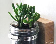 the3Rsblog Hanging Mason Jar Planter Final 03