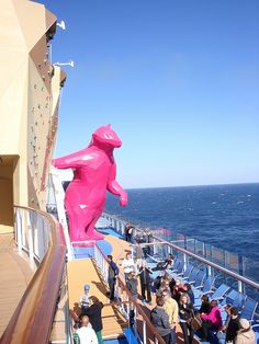 The Pink Bear on Quantum of the Seas